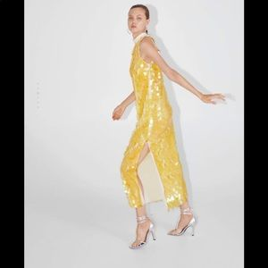 nwt zara limited edition sequined dress
